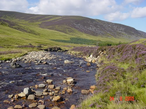 parc national de Cairngorms Ecosse