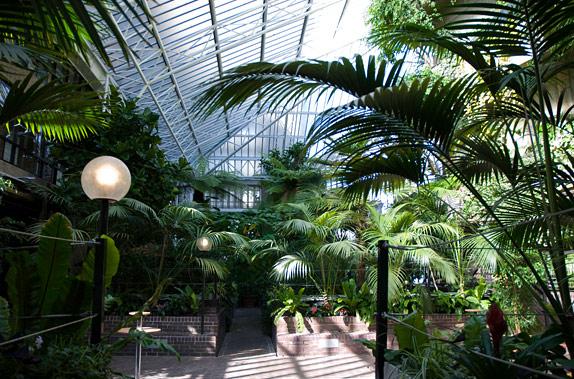 http://mytourduglobe.com/wp-content/uploads/2014/08/barbican-conservatory.jpg