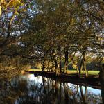 Balade dans le Richmond Parc du Nord de Londres: Trent Park