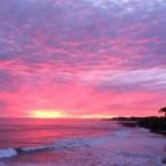 Vivre en Californie: l'expérience de Laura
