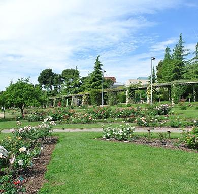 jardin-de-roses-cervantes-barcelone