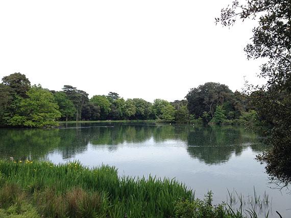 lac-Holkham-nature-reserve