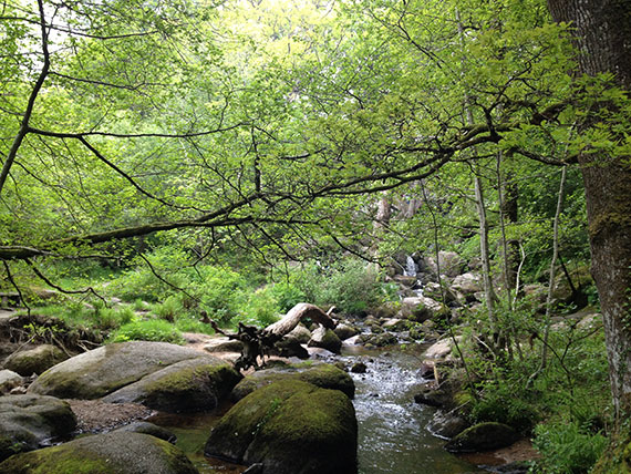 becky-waterfall