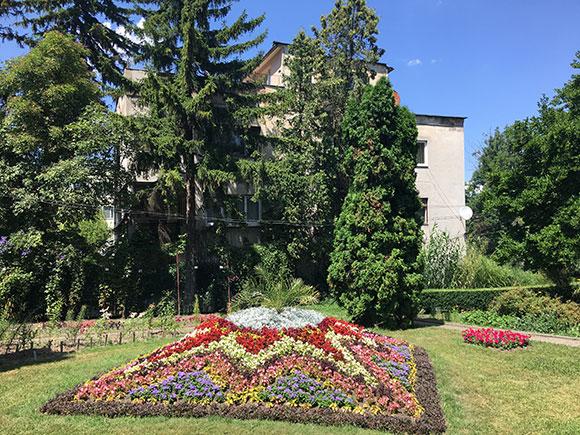 jardin-botanique-cluj-parterre-de-fleurs
