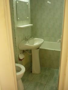 salle de bain hasdeu