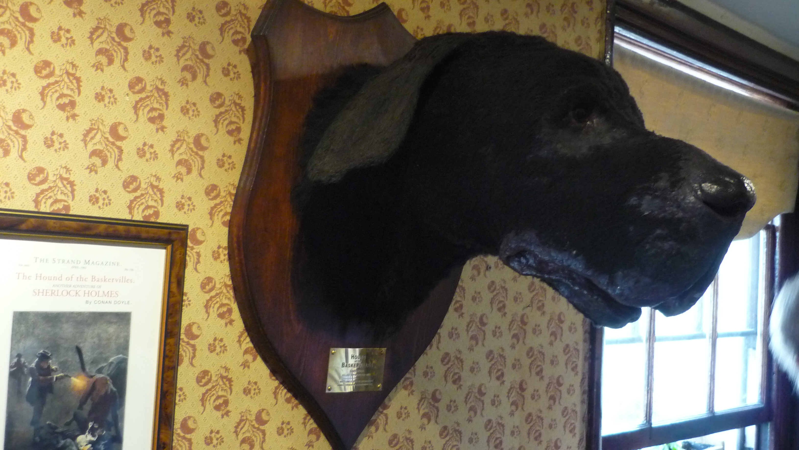 Le chien des Baskerville musée sherlock holmes londres