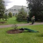 Jardins de Londres: Kew Gardens