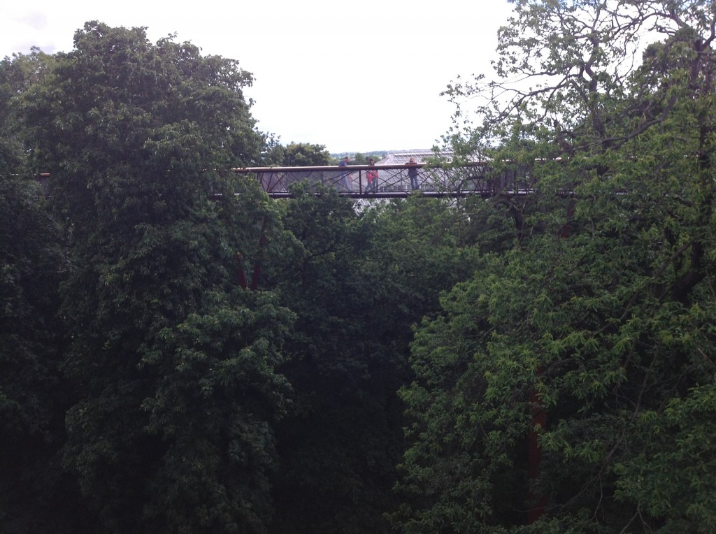 top tree walkway Londres