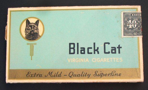 Blackcatplain40