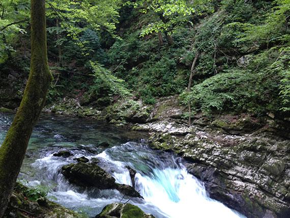 riviere-gorge-vintgar