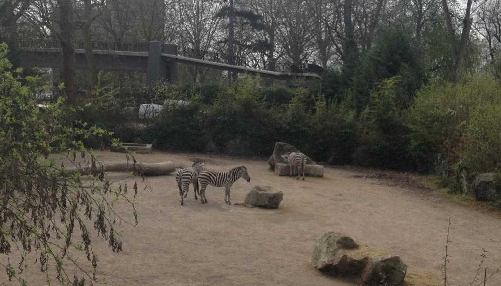 parc zoologique de lille