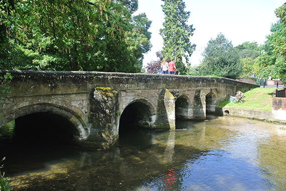 pont-salisbury