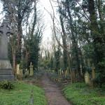 Dans les allées du cimetière de Highgate à Londres
