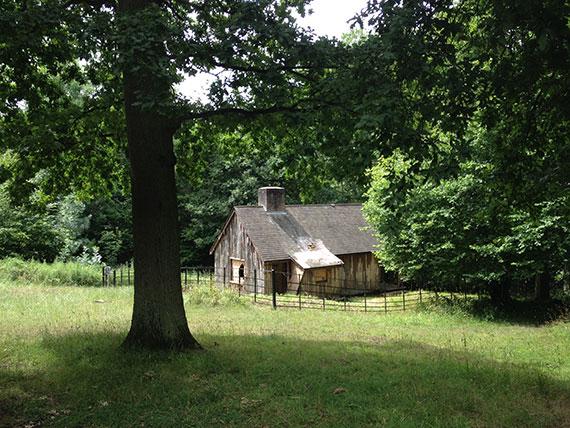 ashbridge-estate-cabane