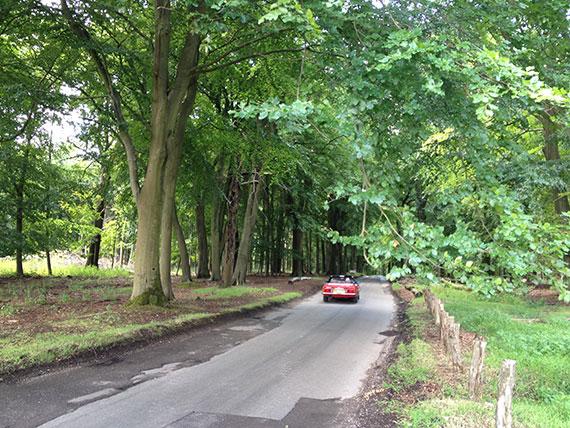 ashbridge-estate-voiture