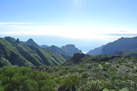 ocean-montagne-tenerife
