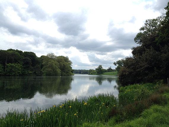 Holkham-lac-fleurs