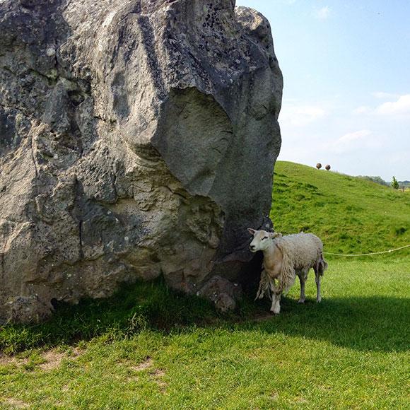 mouton-avebury