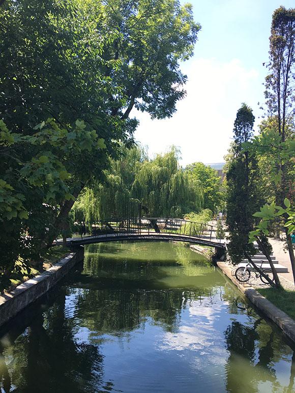 cluj-parc-central