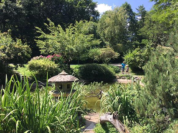 jardin-botanique-cluj