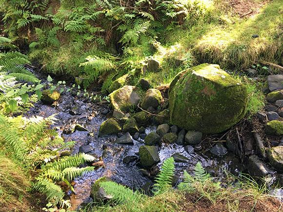 cascade-Linlithgow