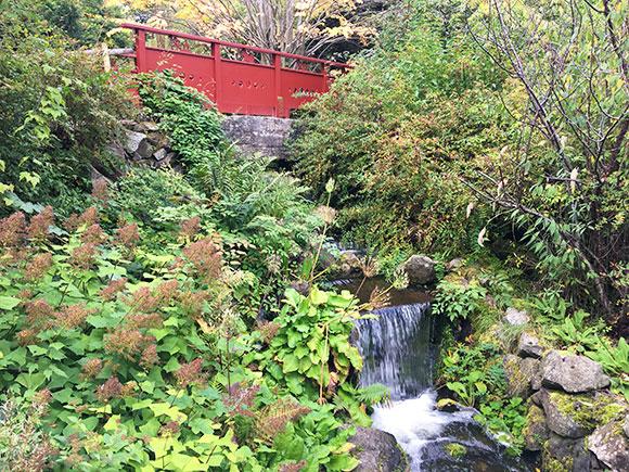jardin-botanique-edimbourg