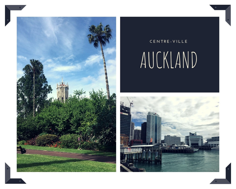 auckland_collage