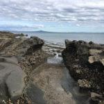 beach-shakespear-park