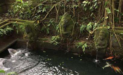 ubud-foret-des-singes